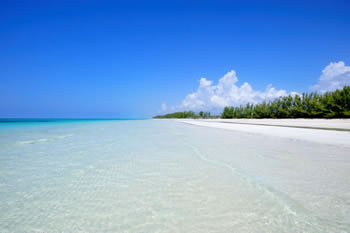 Grand Bahama Island offers many stunning and secluded beaches